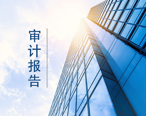 深圳审计报告的目的是什么.jpeg