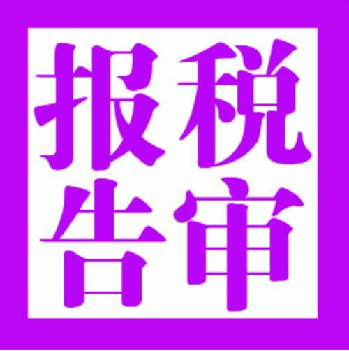 深圳税审报告6.jpg